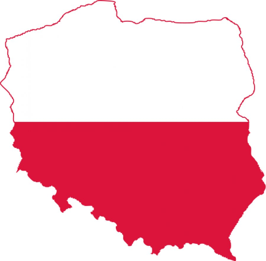 Polish NPP still on the table